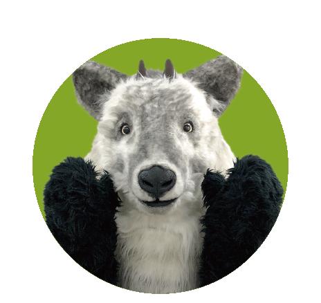 WHAT IS SANTA?